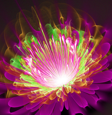 illustration of a fractal fantastic bright shiny flower Stock Photo