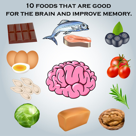 illustration 10 foods that are good for the brain and improve memory.