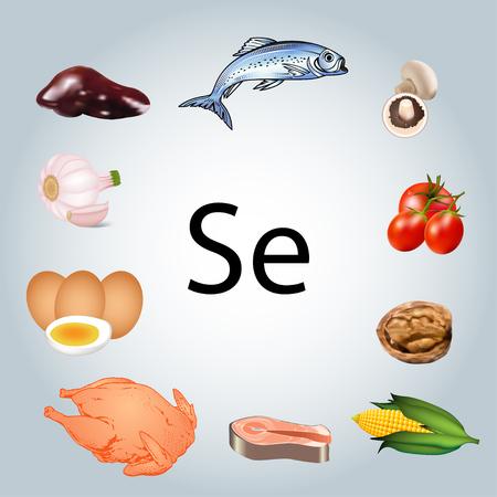 Illustratie van voedingsmiddelen die rijk zijn aan selenium. Gezond eten