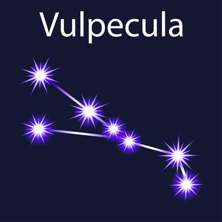 Illustration constellation Vulpecula  with stars in the night sky
