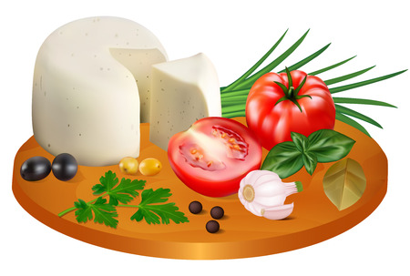 Illustration of Mozzarella Cheese with Tomatoes, Garlic and Onions
