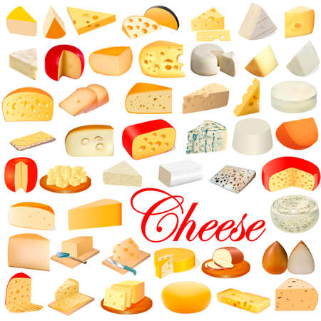 illustration of a set of different types of cheese