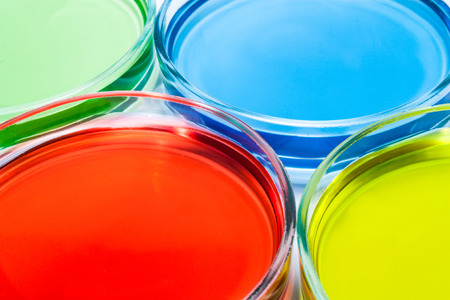 Set of Petri dishes with colored liquid photo
