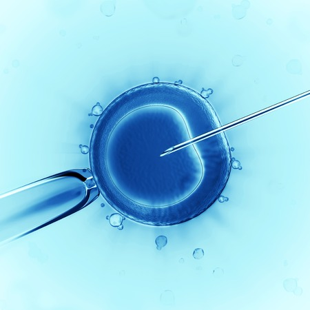 3d version of artificial insemination  cell under the microscope