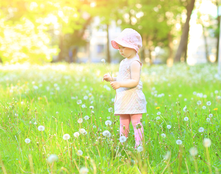Little girl with dandelions the park on a sunny day