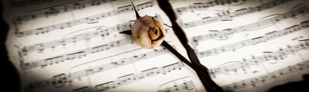 concept of time.yellow rose on the music sheet