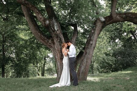 happy newlyweds kiss near a large spreading tree