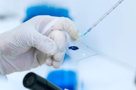 close up. scientist conducts research in the laboratory.
