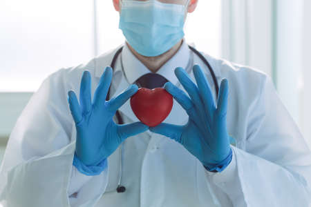 doctor is looking at the heart in his hands.