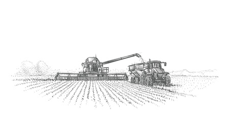 Combine Harvester and tractor working in field illustration. Vector.