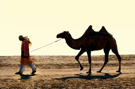 drover: The drover with a camel go on wilderness Stock Photo