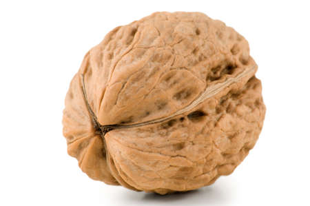 Walnut are photographed close-up Stock Photo