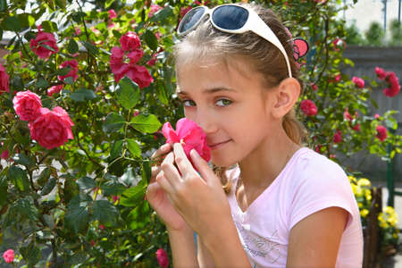 smells: The girl smells rose on a flower-bed