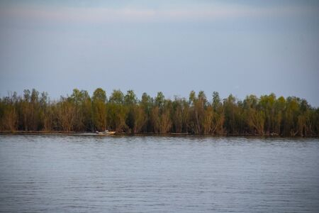 A motor boat on the background of an overgrown shore floats along a wide Siberian river. River landscape