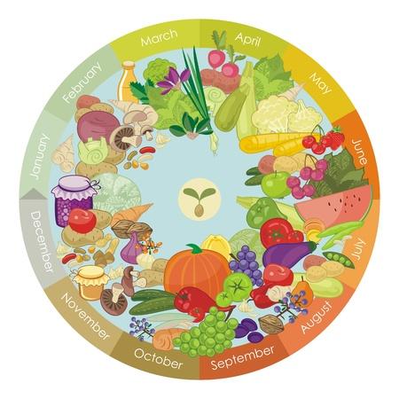 様々 な野菜や果物のイラスト カレンダー  イラスト・ベクター素材