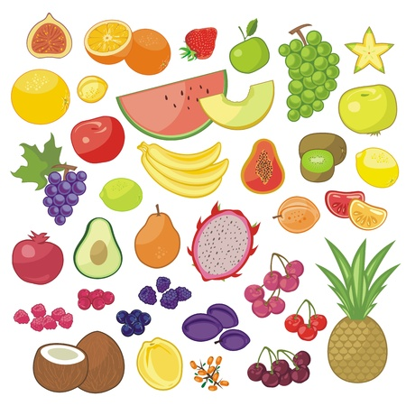 Set with various seasonal and exotic fruits Stock Vector - 20924946