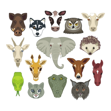 Set with heads of various wild and domestic animals Vector