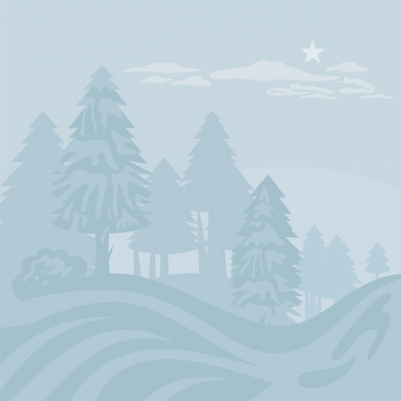 fir trees: Winter foggy landscape with mountain forest