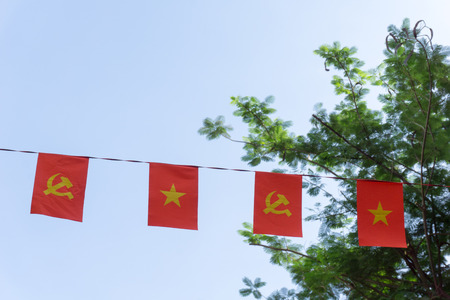 Flag of Viet Nam and the Communist Party flag