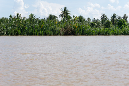 mekong river: Mekong River and jungle
