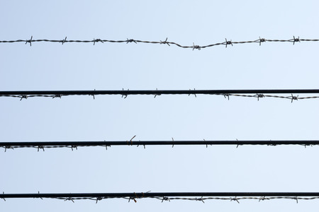 barbed wires: barbed wires Stock Photo