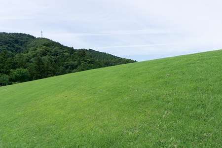 The grassy hill and the sky Stock Photo