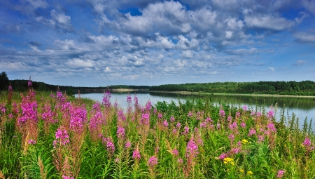 Irtysh River, Western Siberia Standard-Bild