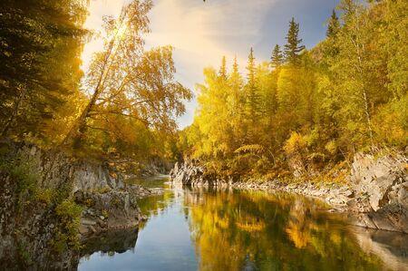 Mountain river, Russia, Siberia, Altai mountains.Mountain river flowing through the autumn forestsunny day.