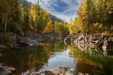 Gebirgsfluss, Russland, Sibirien, Altai-Berge. Gebirgsfluss, der durch den Herbstwald fließt. Standard-Bild