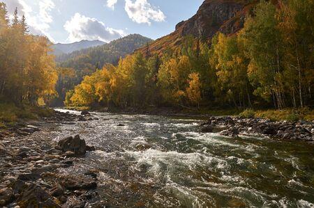 Mountain river, Russia, Siberia, Altai mountains.Mountain river flowing through the autumn forest . Stockfoto