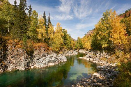 Mountain river, Russia, Siberia, Altai mountains.Mountain river flowing through the autumn forest . Standard-Bild