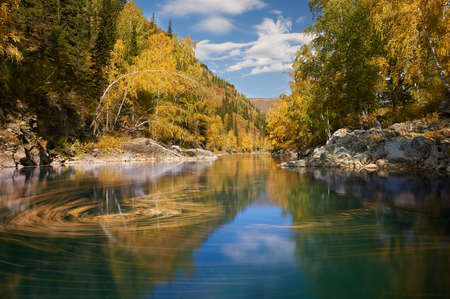 Mountain river, Russia, Siberia, Altai mountains. Mountain river flowing through the autumn forest.