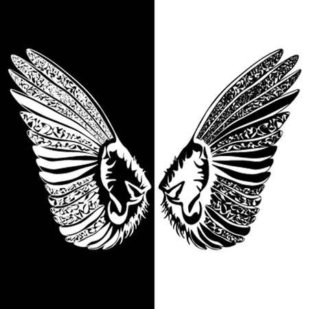 angelic: Black-and-white wings of love. Lacy. Illustration