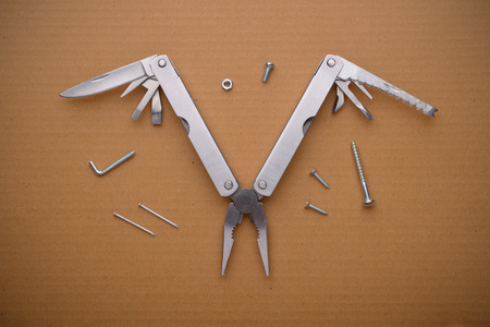 multifunction: Multitool bird on cardboard. A tool for a variety of cases.