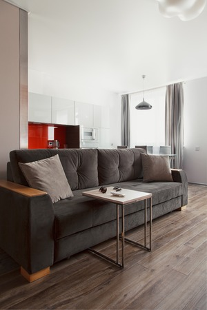 respectability: Modern interior. Living room with comfortable furniture and a dining area Stock Photo