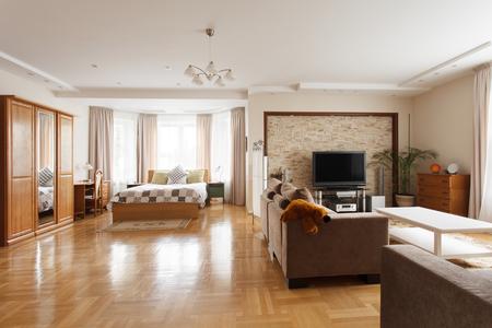 Grote slaapkamer gecombineerd met woonkamer. Interieur ontwerp
