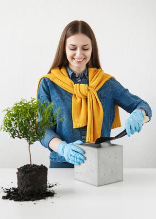 Vrolijke meid overplant een houseplant in een nieuwe pot beton Stockfoto