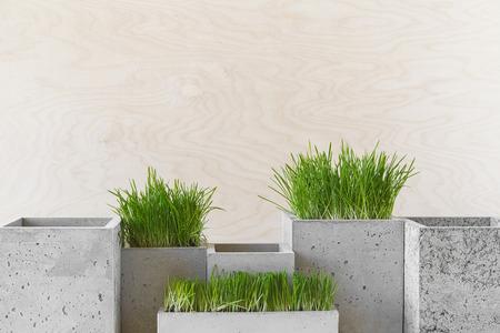 Stijlvolle betonnen potten met groen gras op een tafel binnen