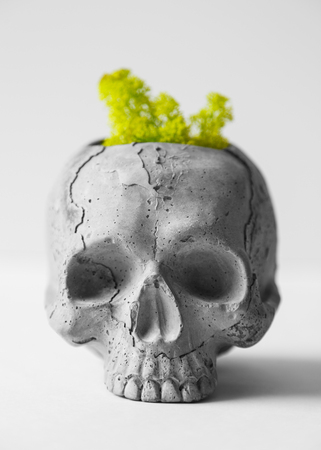 Skull made of concrete. Human skull in the form of pot for flowers. Decor in the shape of a skull