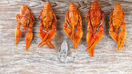 Food banner. Tasty boiled crawfish on wood background Imagens