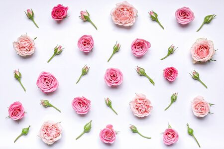 Flower pattern: flowers and rosebuds on a white background. Top view Banque d'images