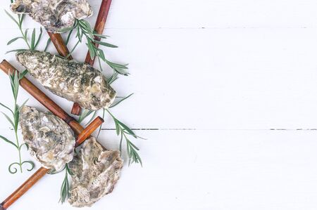 Horizontal spa border. Oyster shells, sea pebbles, dry bamboo, young sprouts on a wooden white background.