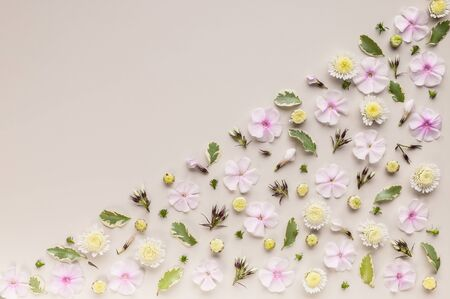 Corner flower pattern on a beige background. Phlox flowers, chrysanthemums and green leaves. Top view. Copy space. Flat lay