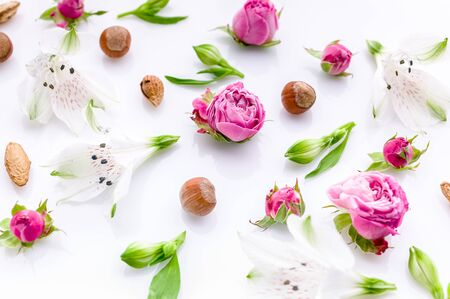 Floral pattern. Flowers roses, buds and hazelnuts on a white background.