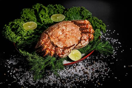 Delicious seafood. King crab with greens, lime and spices on plate. Horisontal shot. Close-up. Фото со стока