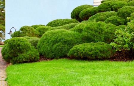 Haouse Wall And Green Garden On A Hill Stock Photo, Picture And Royalty  Free Image. Image 23828857.