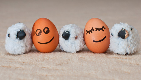 two funny smiling eggs near a small sheeps  photo