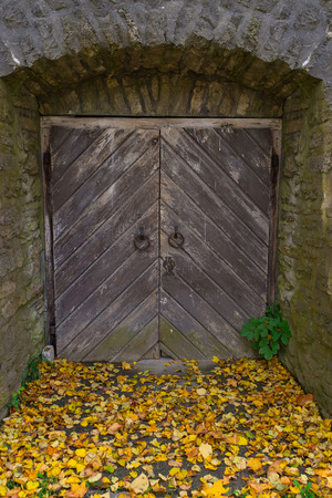 old wooden door, and stone wall, fallen leaves photo