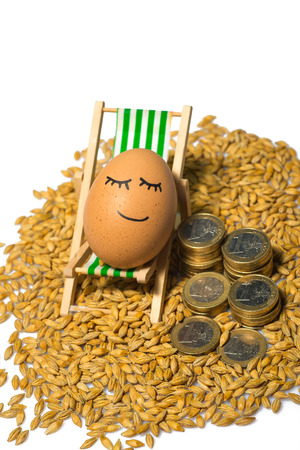 funny egg and euro coins with seeds piles isolated on a white photo
