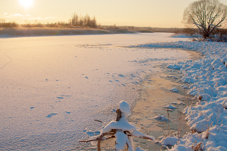 frozen lake: a frozen lake with reeds. Stock Photo